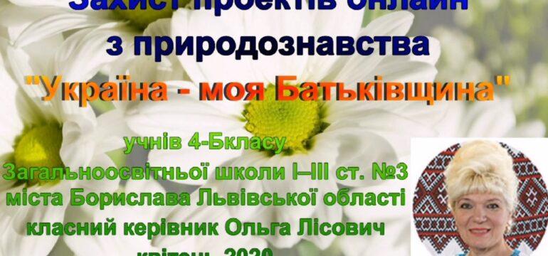 Проектна робота під час дистанційного навчання (ЗОШ №3, Ольга Лісович, кл.к. 4 – Б)